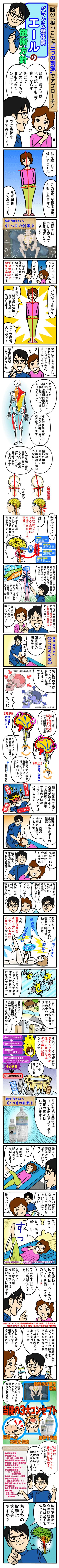 脳幹調整をする大阪堺の整体院エール|コマ漫画