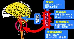 脳幹の流れが低下すると…