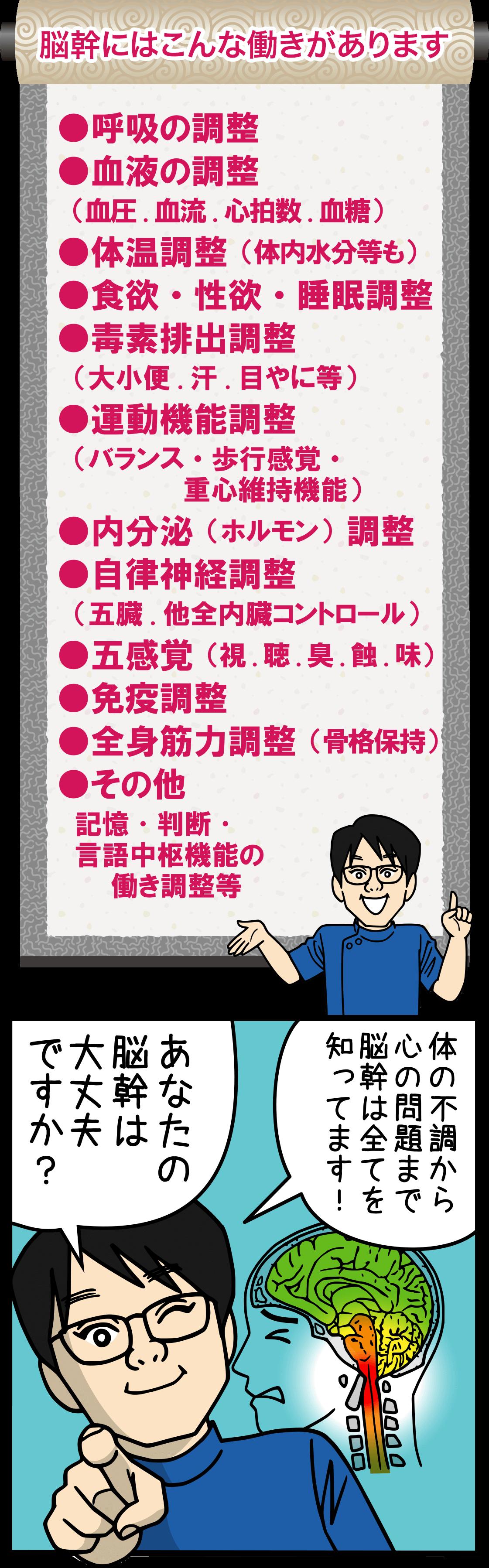 脳幹の働き 大阪堺市YELL(図)