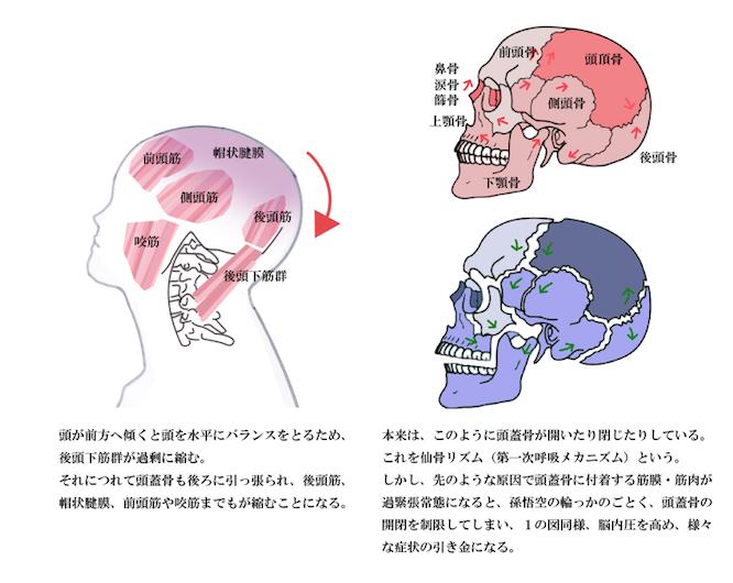 フラつき・めまいの原因 大阪堺エール(図)