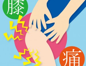 膝の痛み【堺市の整体院エール】