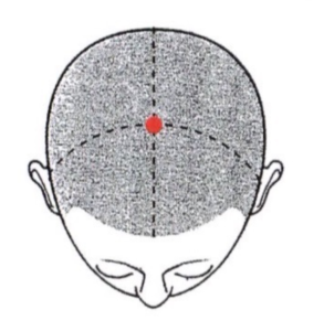 百会と自律神経