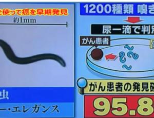 嗅覚=振動=波動
